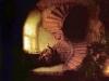rembrandt_philosopher_in_meditation 1632